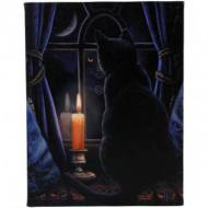 Lisa Parker Midnight Vigil Plaque