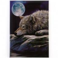 Wolf on Rock Magnet - Lisa Parker