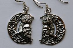 Lisa Parker Owl in Moon Earrings - Silver
